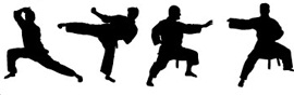 Martial Arts Franchise Opportunities